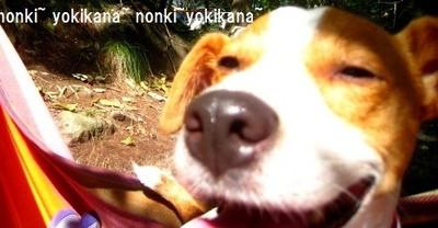 Okilyakusama_2