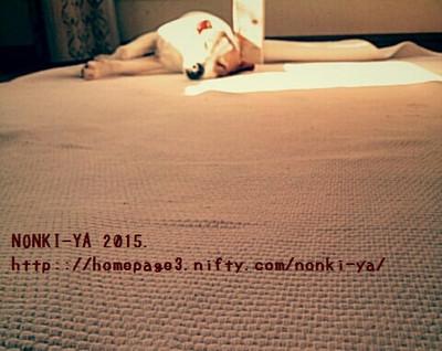 Img_20150502_155845